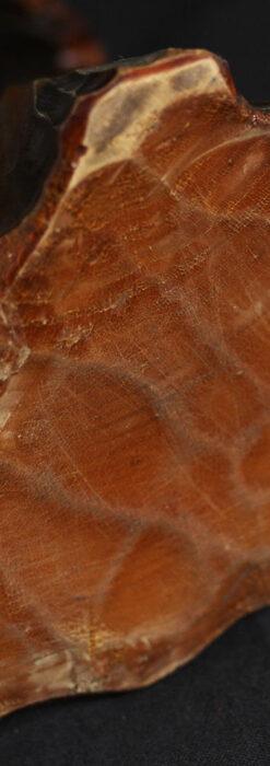 木に留まる鷲 風格ある木彫り懐中時計スタンド-S0845-16