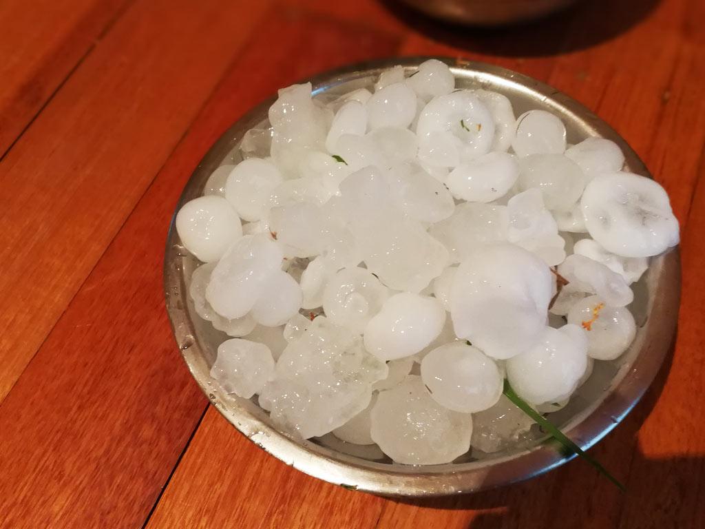 集めた大粒の雹