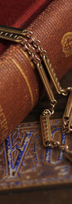 2種類の装飾されたバーの綺麗な懐中時計チェーン-C0485-2