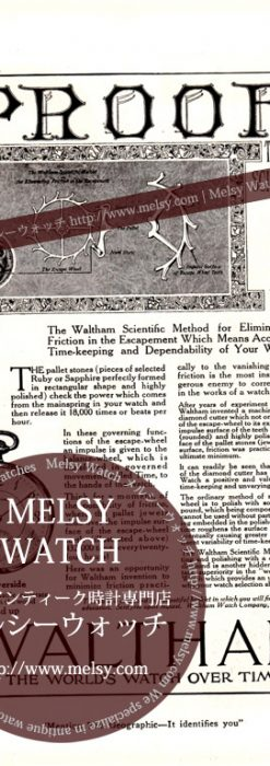 ウォルサム印刷物-M3136-1